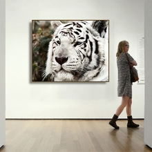 Laeacco Canvas Calligraphy Painting Black and White Tiger Posters Prints Wall Art Picture Living Room Nordic Home Decoration