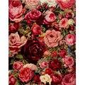 Subiu pintura a óleo by numbers diy digital pintura acrílica by numbers 40x50 cm flores fotos da parede da arte frameless gx7524
