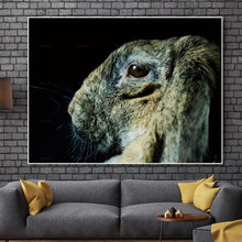 Animal Painting Rabbit Canvas Posters and Prints Peacock Picture Wall Art Frameless printing