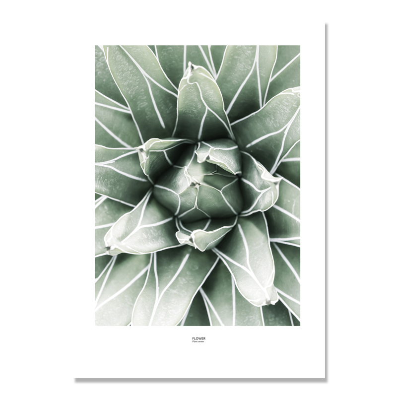 Image 4 - Cactus Wall Art Canvas Painting For Living Room Nordic Poster  Decoration Green Plants Wall Pictures Unframed-in Painting & Calligraphy from Home & Garden