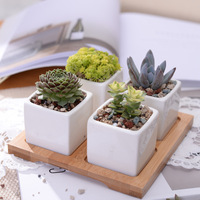 5pcs Set Minimalist Cube Flowerpot White Ceramic Succulent Plant Pot With Bamboo Stand Bonsai Planter Garden