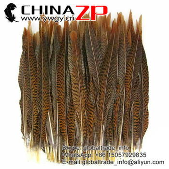 CHINAZP Feathers Prime Quality 35~40cm(14~16inch) Natural Golden Pheasant Center Tail Feather For Brazil Carnival Costumes