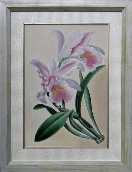 Cuadro de flores para pintar cuadro flores pintado a mano - Cuadros murales para pared ...