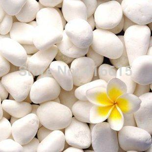 White Small Stones Garden Decoration Hydroponic Plants Flower Pot White Stone Gardening Supplies Garden Decor 100g