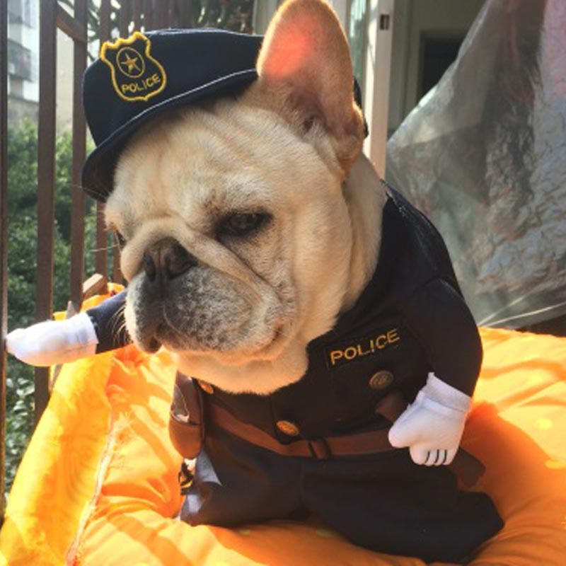 Funny-Halloween-pet-cat-dog-police-costume-cosplay-with-dog-police-hat-small-dog-puppy-party (1)