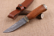 Fine Hunting Damascus Fixed Blade Knife Brass+Wood Handle Tactical Knife Multi Outdoor Survival Knives Straight Knives Camp EDC