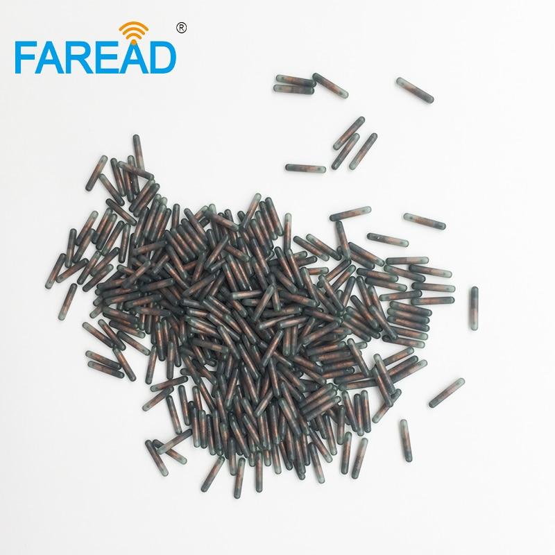 X80pcs LF RFID Transponder Coding Free ICAR Number 1.4*8mm RFID Implant Microchip EM4305 ISO11784 /ISO11785