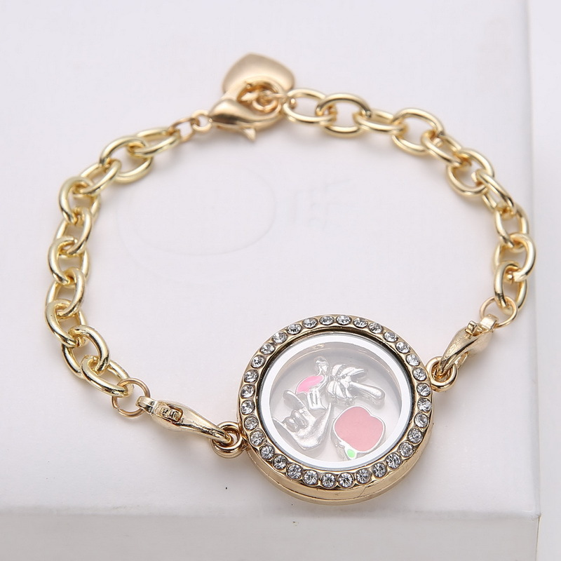 5pcs/lot 2014 Fashion Glass Floating Locket Bracelets ...