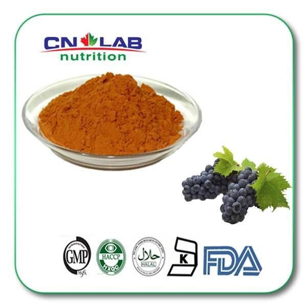 95% OPC UV grape seed extract oligomeric proanthocyanidins