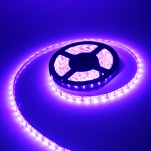 Dimmable RGB Garden Decoration Led Lamp Led Strip Friendly Environment Energy Saving DC12V 14w m including