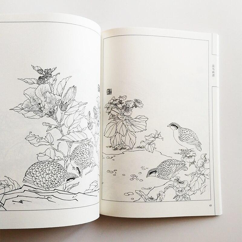 94 páginas flores y pájaros pintura Colección Arte libros para ...