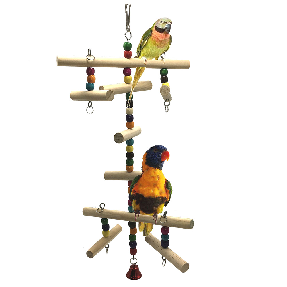 How To Put A Swing And Get A Bird Used To It- Train Your Birds