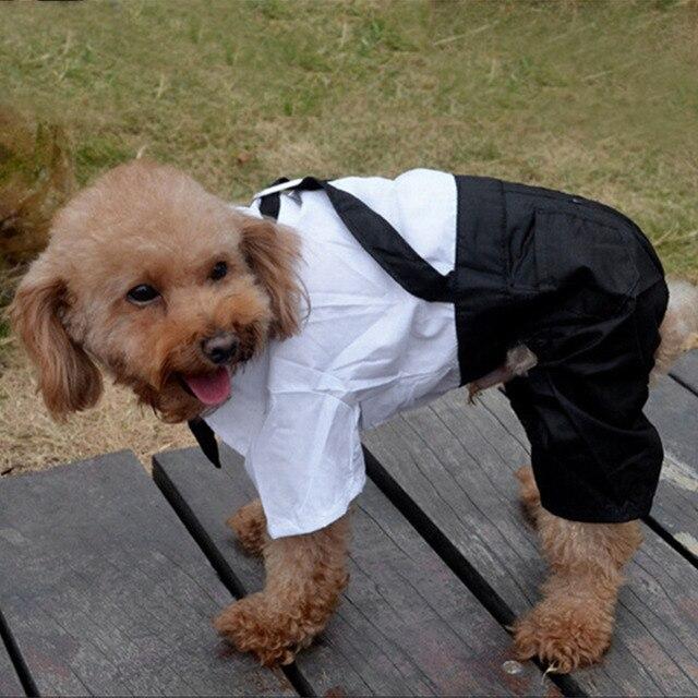 Fashion 2016 Cute Pet Apparel Dog Jumpsuit Coat Puppy Clothes Outwear Bow Dog Palysuit Romper Pants Suit Pet Wedding Clothing Y1