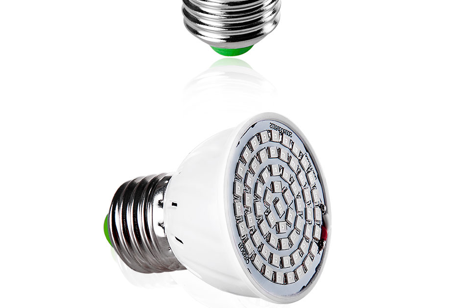 Phyto lamp (13)