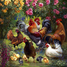 5D DIY diamond embroidery pictures Home Decor Full  rhinestone Painting cross stitch cock flowers handmade crafts
