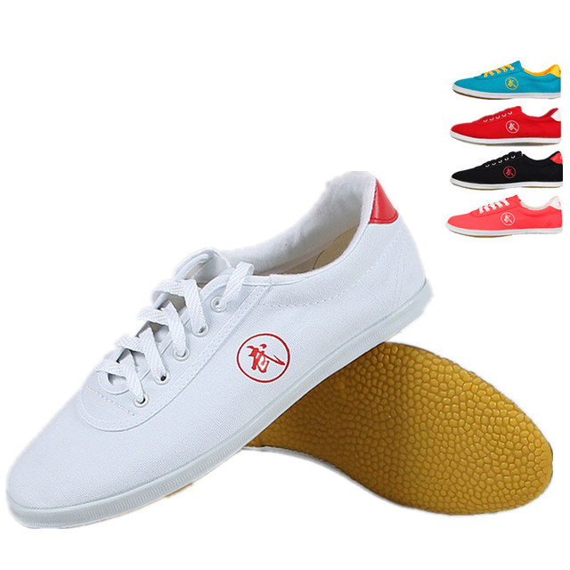 High quality Tai Chi Shoes Kung Fu Shoes Wing Chun Shoes Martial Arts Shoes Men Women taiji