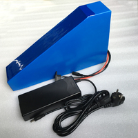 Free bag Ebike Battery 48v 20Ah 1000W Electric Bike Battery 48V with 30A BMS Lithium Battery 48V triangle style Battery Pack