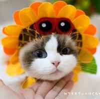 Подсолнечное головные уборы собака кошка Воротники