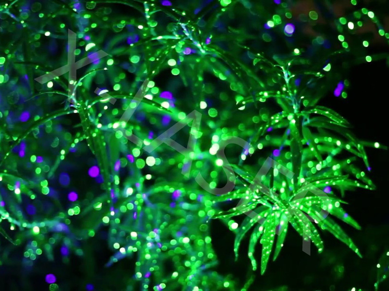 outdoor christmas laser lights for treesgarden laser lightelf light christmas lights projector outdoor laser in christmas from home garden on