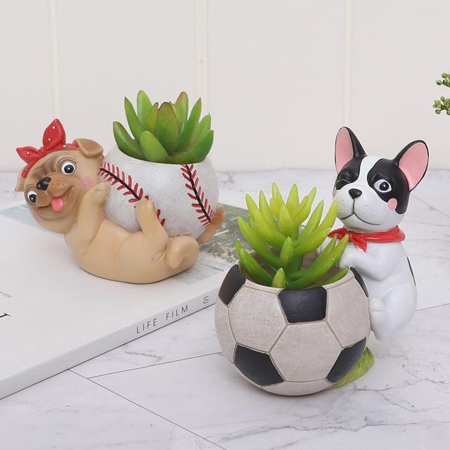 Cartoon Animal Fleshy Flower Pot