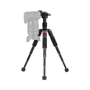 "Image 5 - Andoer K521 5 section Extendable Aluminum Alloy Tripod with Mini Ball Head 1/4""Screw Mount for Canon Nikon Sony DSLR ILDC Camera"