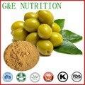 Природные органические olive экстракт листьев 20% Олеуропеин
