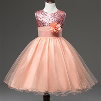 Flower Girl Dress With Rose Party Birthday Chirstening Dress For Baby Girl Princess Children Toddler Girl