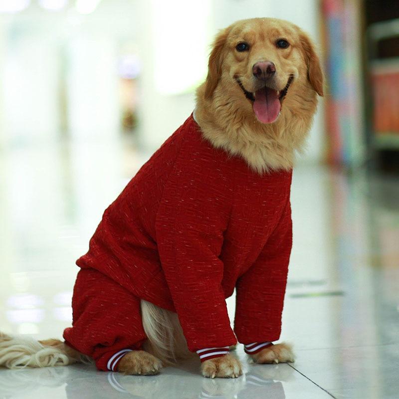 dog coat jacket winter (7)
