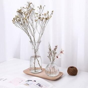 Hydroponic Plants Vase Simple Creative Glass Vase Home Decorative Table Transparent Flower Vase 1