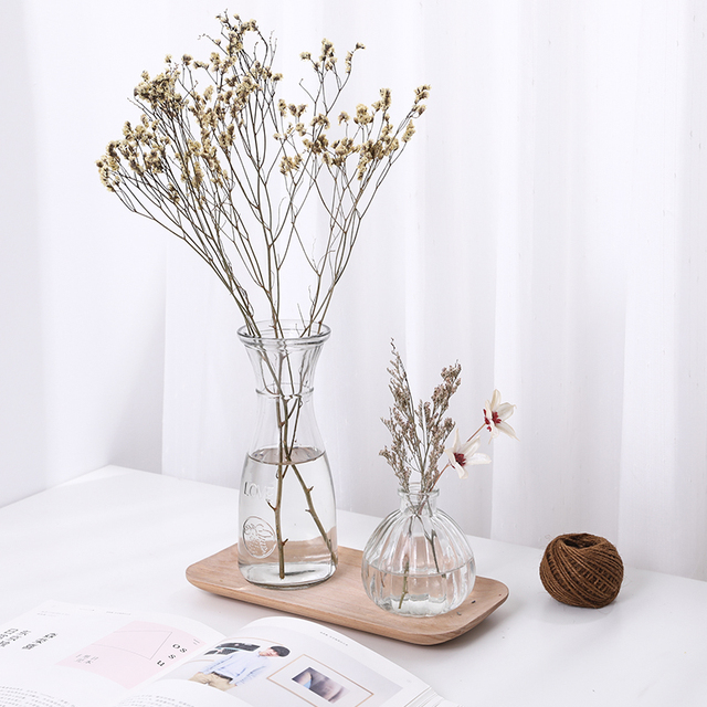 Hydroponic Plants Vase Simple Creative Glass Vase Home Decorative Table Transparent Flower Vase 1