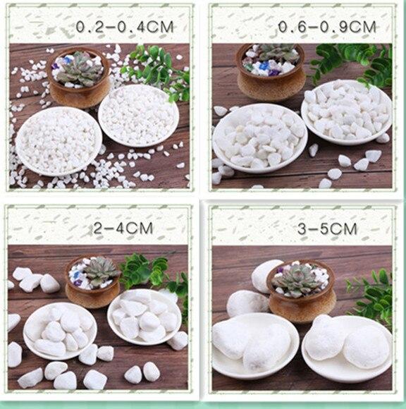 Galets de pavage de jardin blanc 1500g/plantes en croissance galets décoratifs d'aquarium