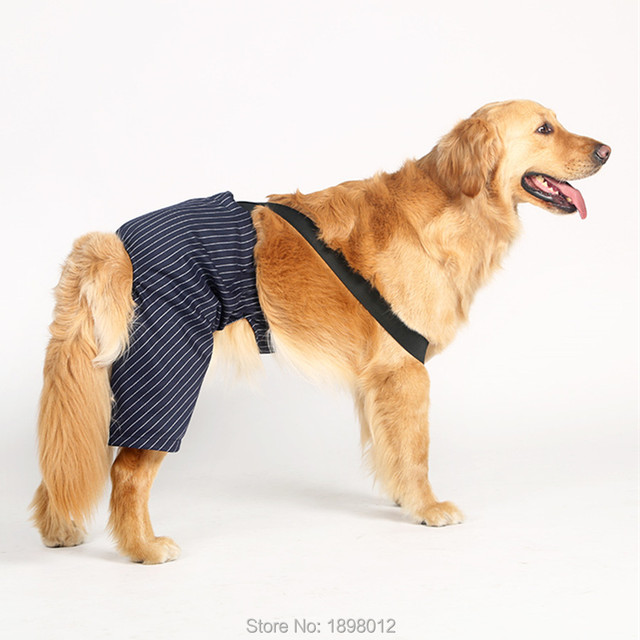 Large Big Dog Pants Rompers Gentleman Bib Wedding Clothing For