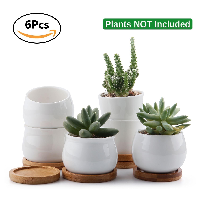 HTB1f3J7JN9YBuNjy0Ffq6xIsVXa4 - Ceramic succulent planter maceta bonsai Plant Pot
