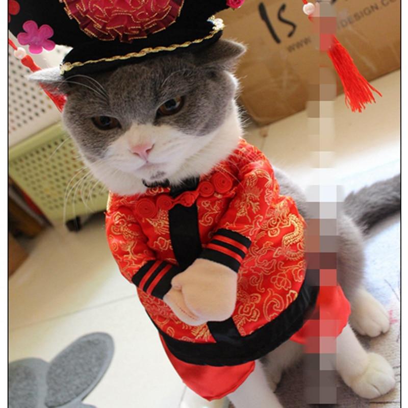 cat 3 chinese