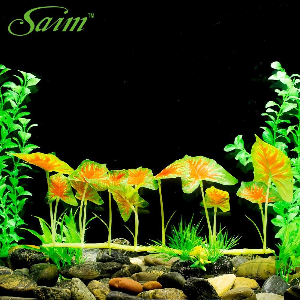 Aquarium Plants Aquascaping Tank Decor Special Plants ...