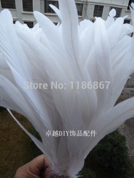 30-35/12-14inch pure white  Rooster tail featherFor Costume&Mask Coque Rooster Tail Feathers 50pcs/lot P181