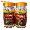 10 Garrafas de FORSKOLIN COLEUS FORSKOHLII EXTRATO 20% PADRONIZADO Cápsula 450 mg x 900 pcs