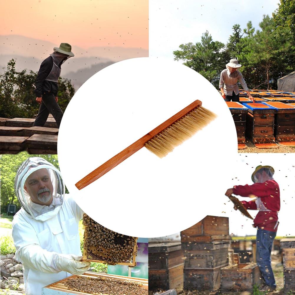 Herramientas de apicultura