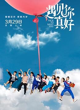 《遇见你真好》2018年中国大陆剧情,喜剧,爱情电影在线观看