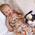 Куэтта enfant органических муслин пеленать лиса ребенка обертывание новорожденного фотографии реквизита одеяло одеяло подарок печати аден anais inbakeren