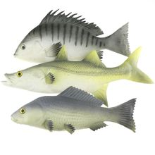 Gresorth 3 Pack Artificial Black Carp Striped Bass Snapper Fake Fish Home Party Decoration - 9 inch zhibo carp vanguard 3 3 9 3lbs 2171394 d48 09