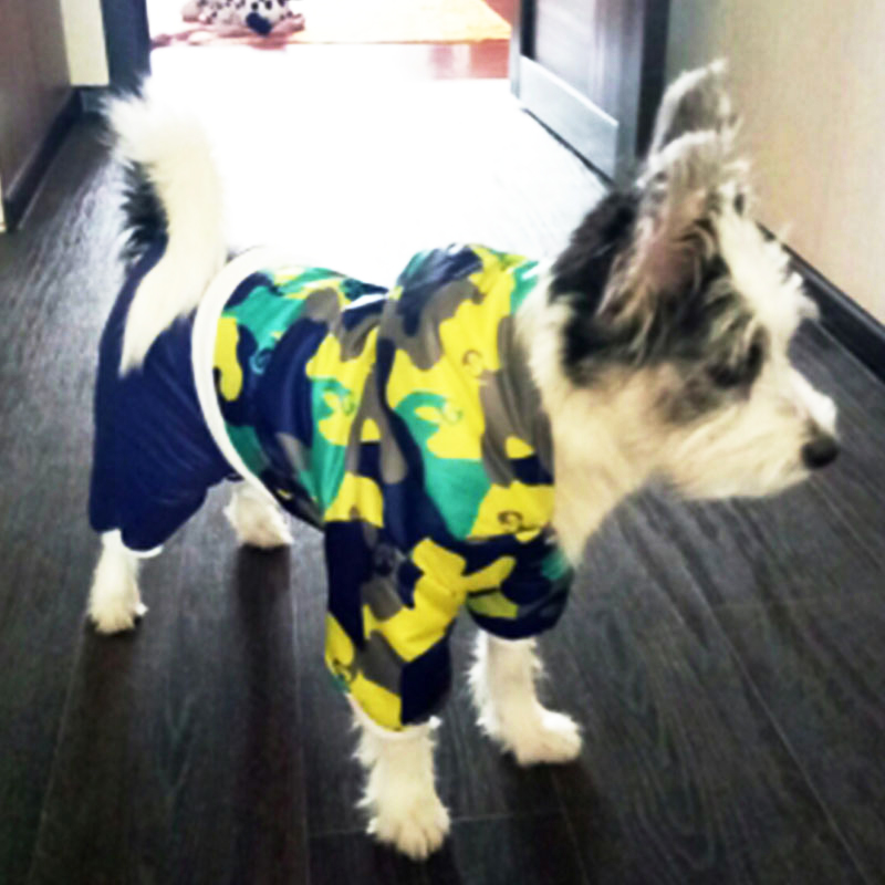 Winter Dog Clothes for Small Medium Dogs Warm Cotton Dog