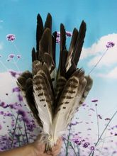 free shipping, sales of high-quality eagle bird feathers
