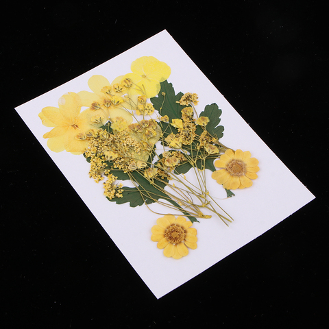 Promo 1 Bag Yellow Natural Pressed Dried Flower Real Dry Leaves For DIY Scrapbooking Art Craft Bookmark Card Making — stackexchange
