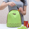 hot new Portable Insulated Thermal Cooler Ice Lunch Box Food Storage Cooler Containers Carry Bag women Travel Picnic hand bag