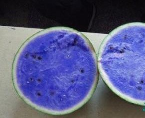 Image Gallery watermelon blue