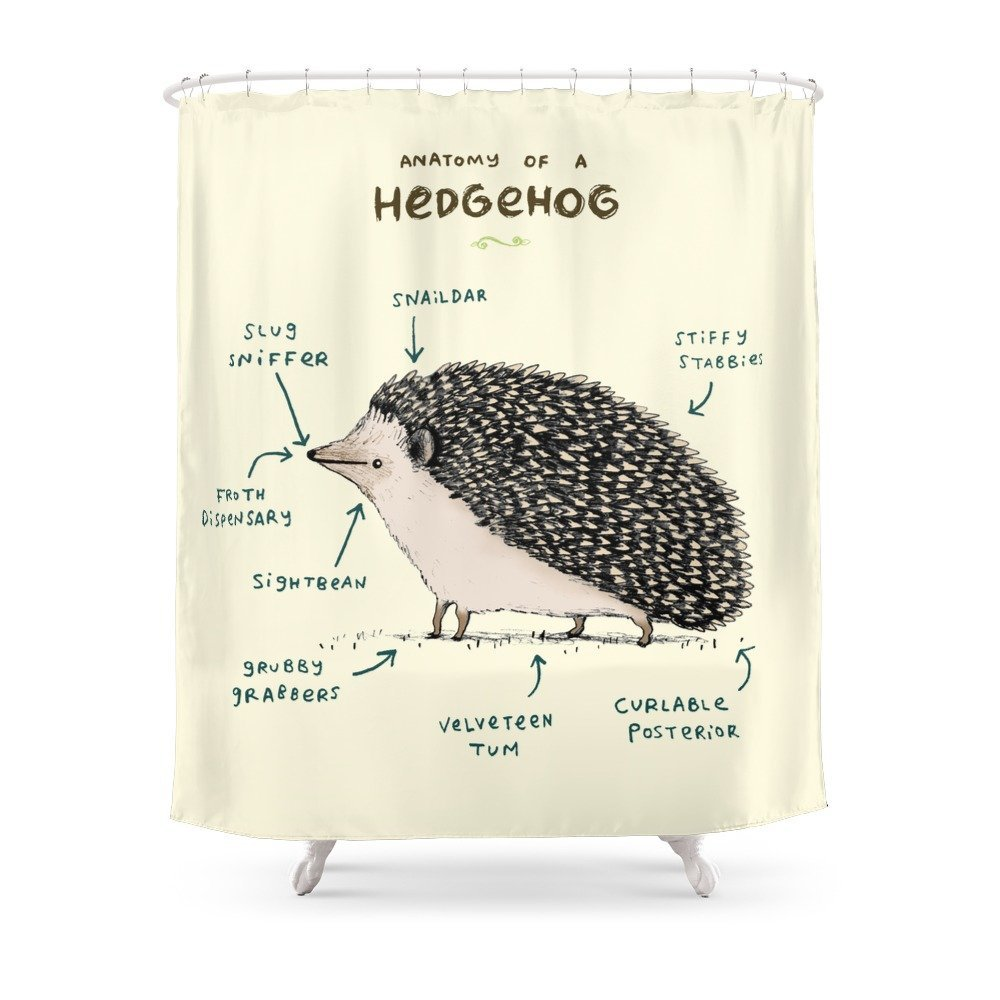 Anatomy Of A Hedgehog Shower Curtain Waterproof Polyester Fabric ...