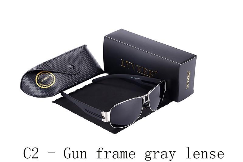 C2 - Gun frame gray lense
