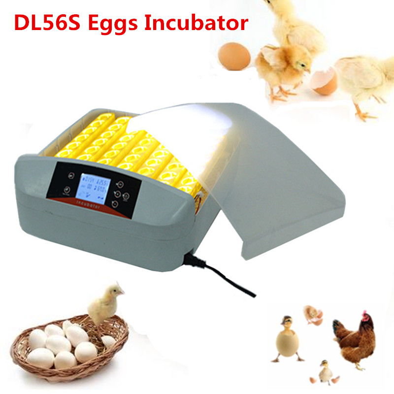 Mini home use 56 egg tray incubator eggs-turning duck egg incubator for sale automatic chicken egg incubator hatching machine ce certificate poultry hatchery machines automatic egg turning 220v hatching incubators for sale