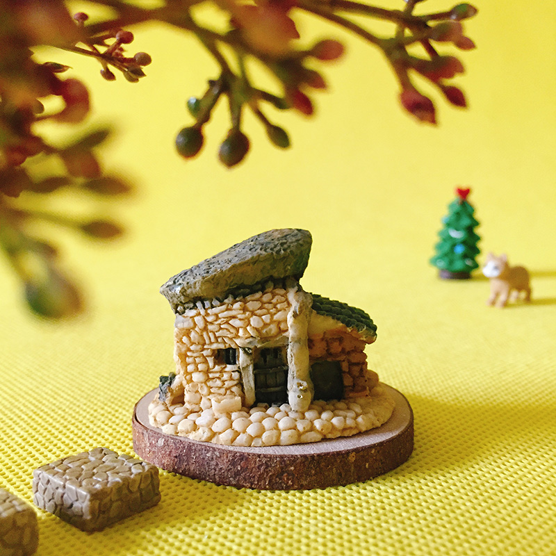 Cute Fairy Garden Gnome Moss Terrarium